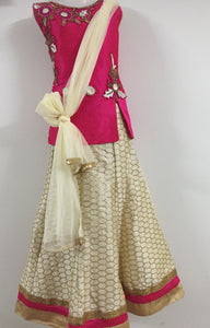 Embroided and Stone Worked Lehenga (Pink & White)