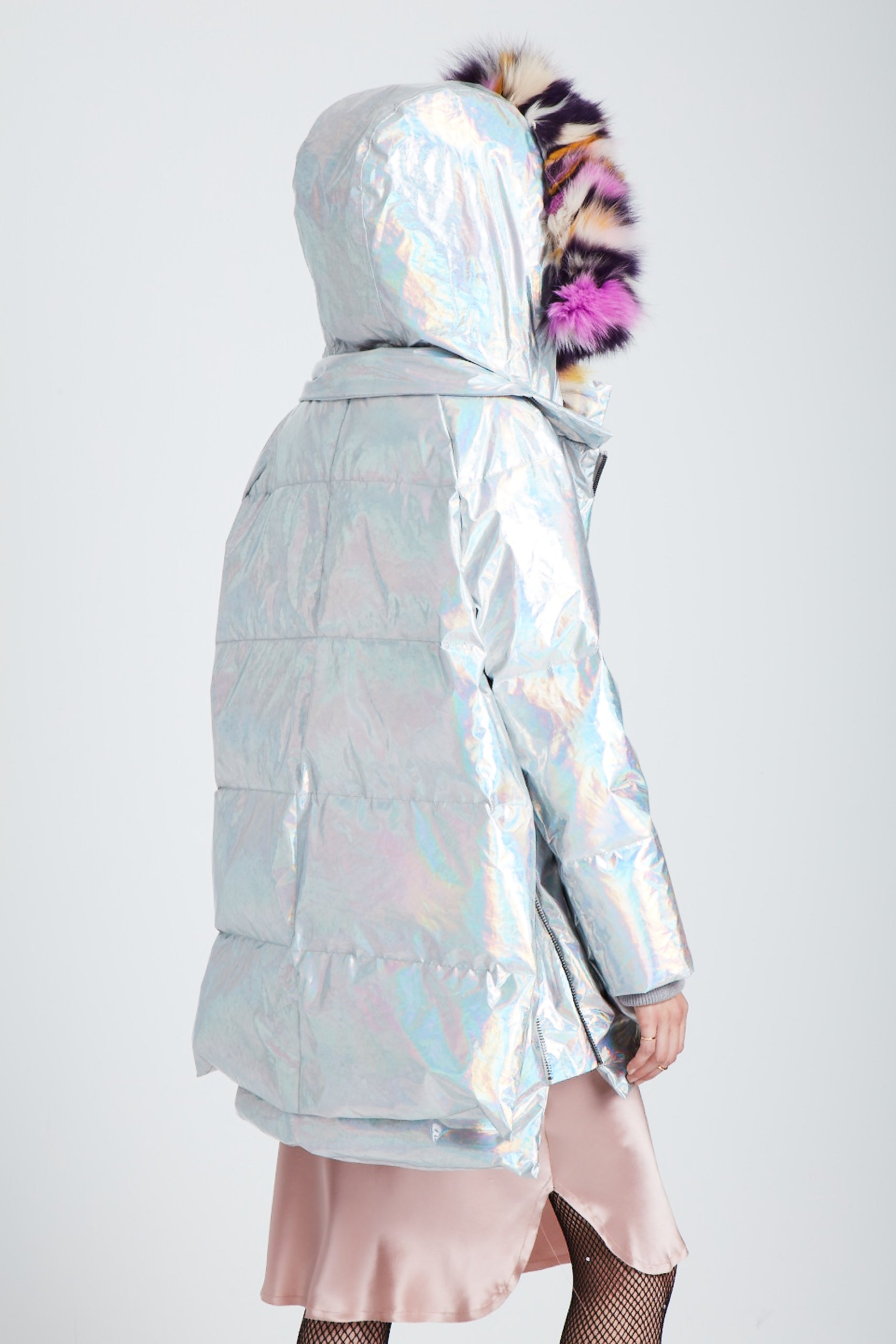The Iridescent Universe Puffer