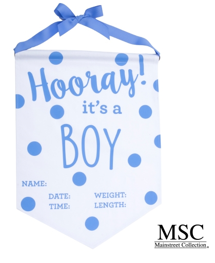 BLUE BOY BABY BANNER by MSC