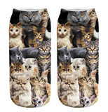 Multi Cat Socks