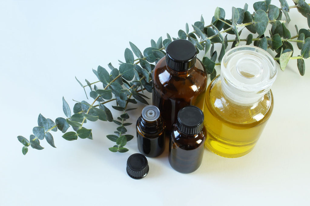 10 Benefits of Eucalyptus Oil