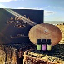 Pebble Aromatherapy Diffuser And Essential Oils Set