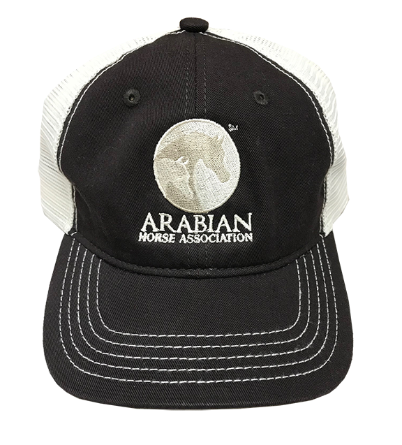 AHA Chocolate Brown and Stone Mesh Cap