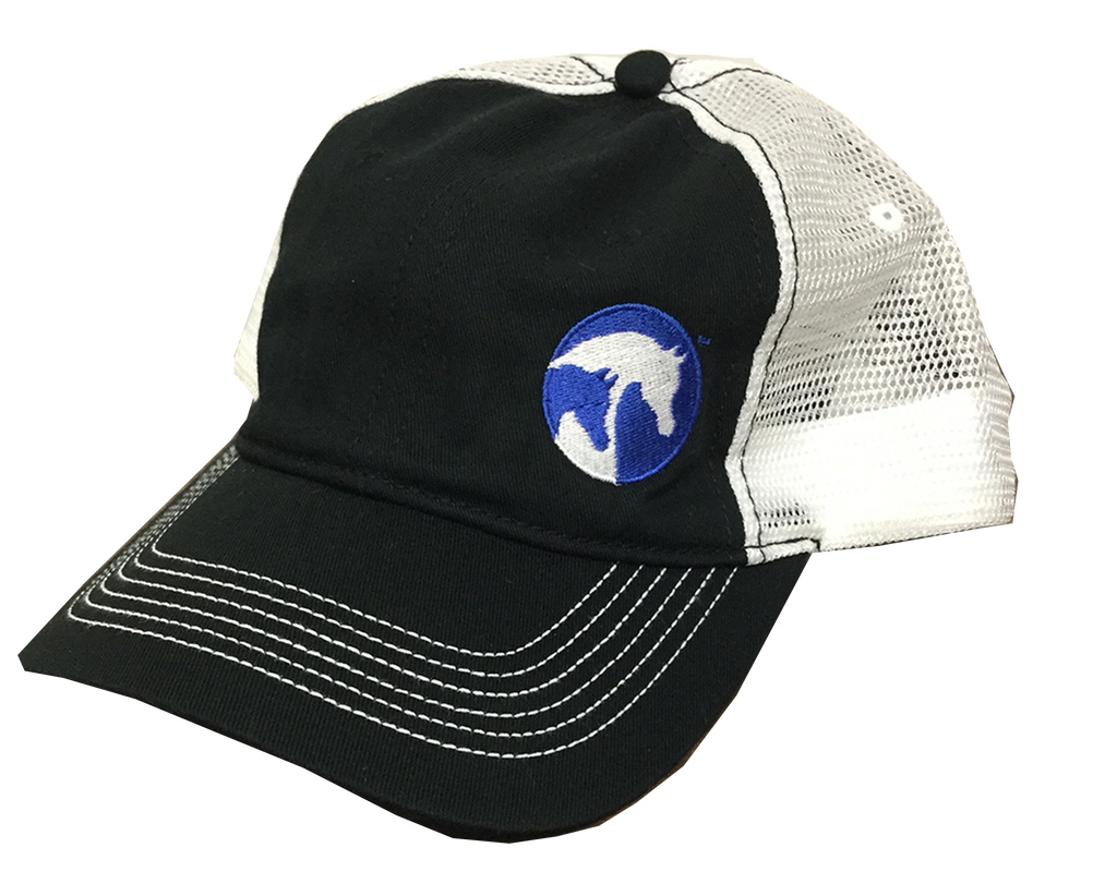 AHA Royal and White Mesh Hat