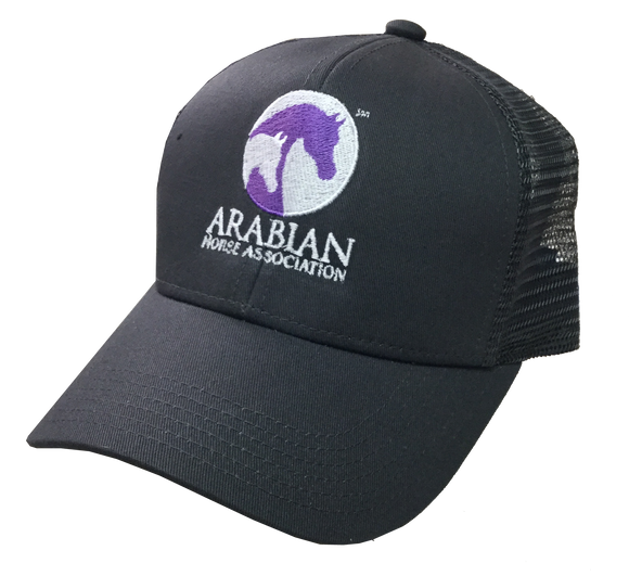 AHA Structured Purple Grey Mesh Hat