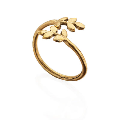 Golden Hour pure brass ring