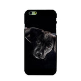 Black Dog Hard Protective Phone Case