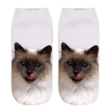 3D Cute Cat Women Socks - Set of 4 Pairs - My Passion Street