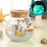 3D Micro Aquarium Night Lamp