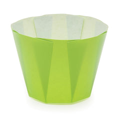 High Gloss Tulip Cups, MB74 - Welcome Home Brands