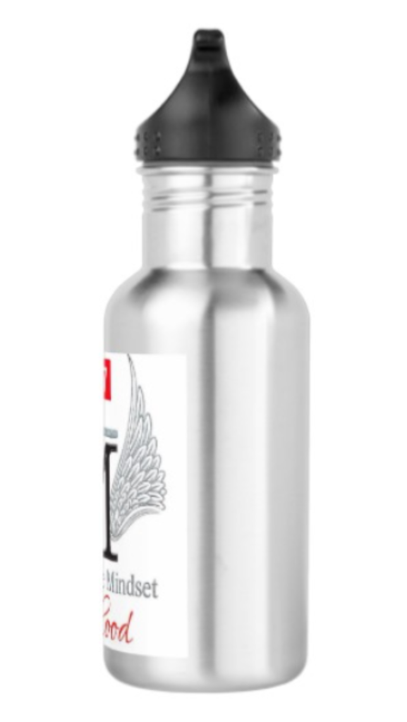 Millionaire Mindset Sisterhood Stainless Steele Water Bottle