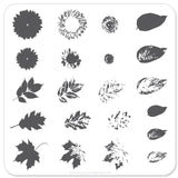 Sunflower and Leaves (CjS-26) - Steel Stamping Plate