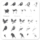 Itty Bitty Birds (CjS-30) - Steel Stamping Plate