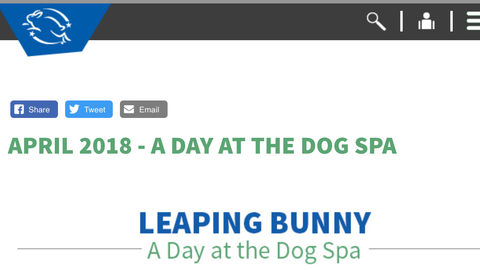 Leaping Bunny Nava Pets Day Dog Spa