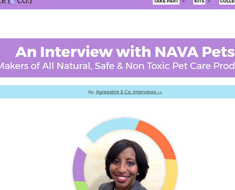 An Interview with NAVA Pets