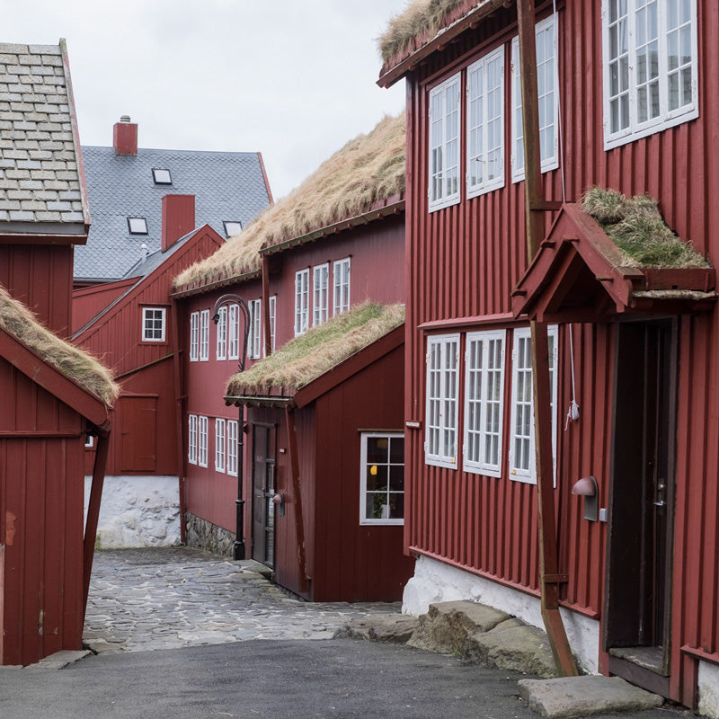 Fancy Tiger Travels to the Faroe Islands, Part 5: Tórshavn