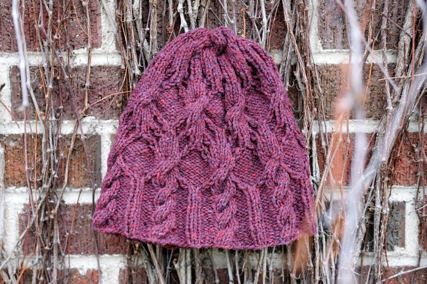 Cleridae Hat in Brooklyn Tweed Shelter Homemade Jam