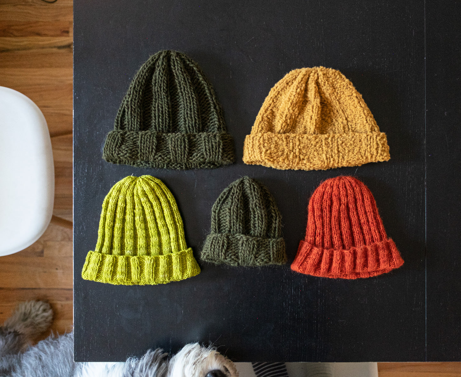 A series of rib-knit beanies with folded brims are laid out on a black table top. They are made in a variety of sizes and textures but share the same pleasingly simple construction. They seem to be laid out like eager pupils before a teacher as the nose of a sheepdog appears to lean in to inspect them.