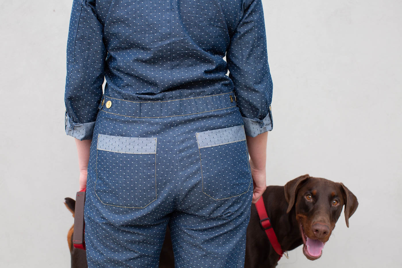 Detail photograph of back pockets on a boiler jumpsuit in indigo and white dots.  Brown dog is peeking around to say hello.