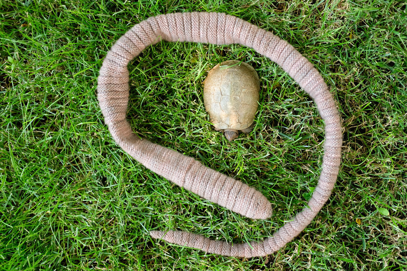 Knit your own Earthworm