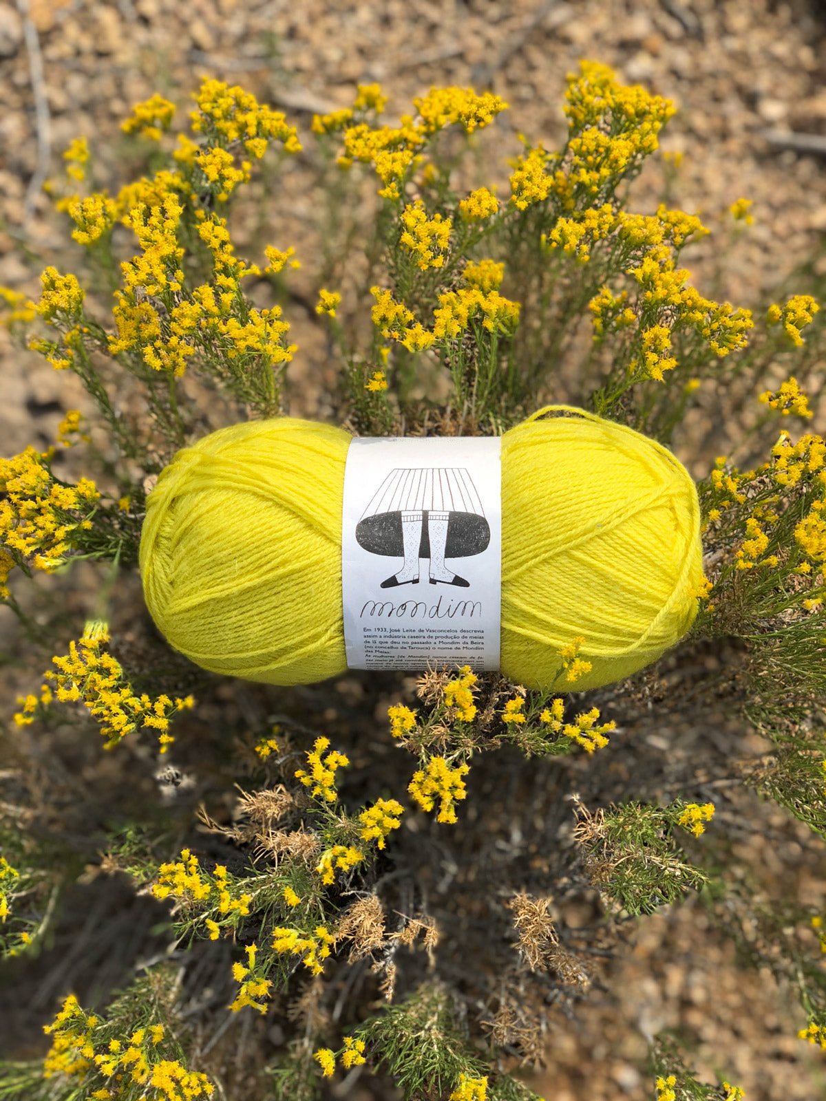Retrosaria Mondim yarn in Yellow 107