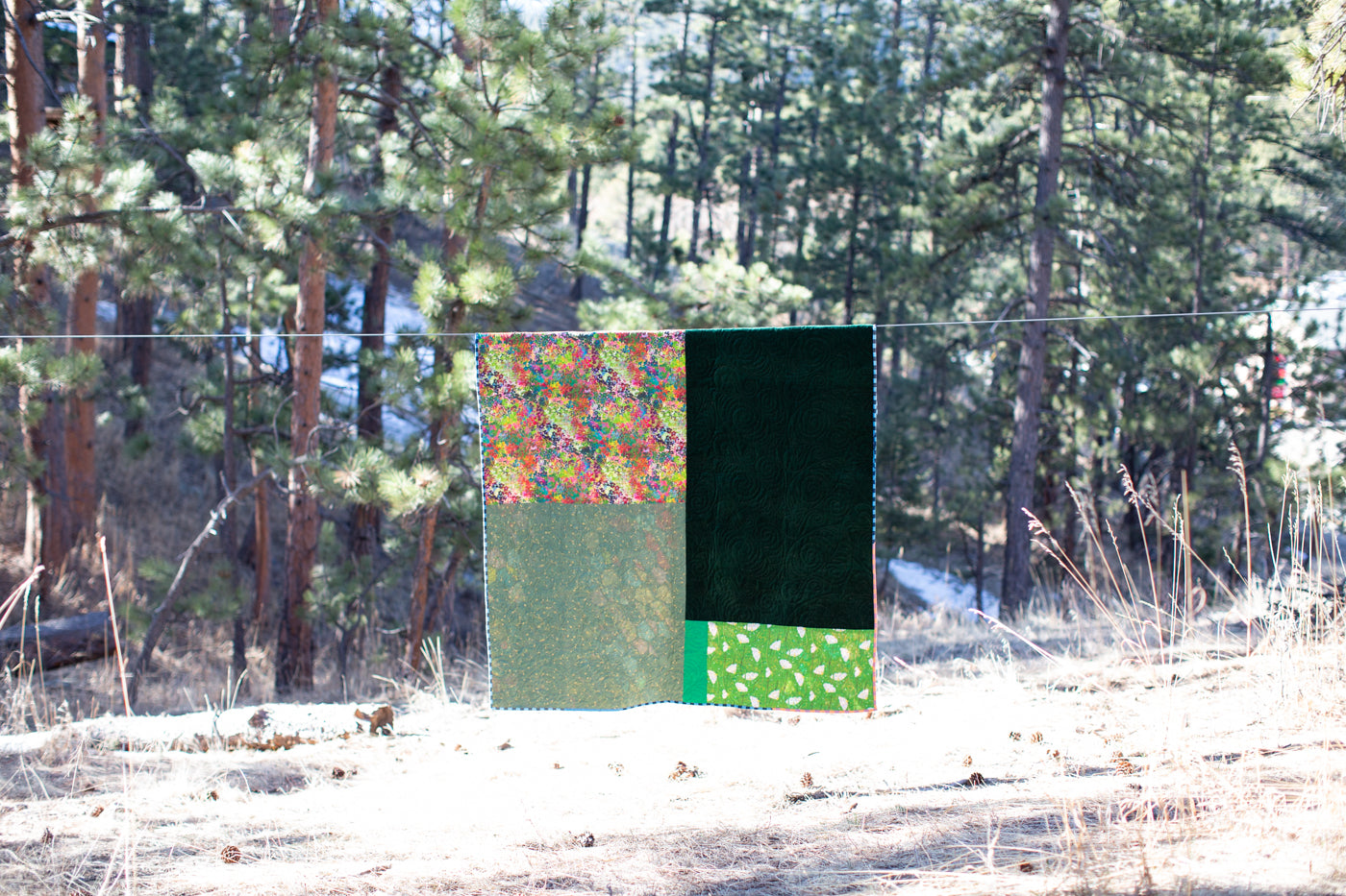 Quilt hanging up in a sunny backyard with evergreens.  The quilt is divided into 4 uneven quarters.  Upper left is colorful flowers, lower is light green and white, upper right is dark velvet green and lower right is bright irish green and white.