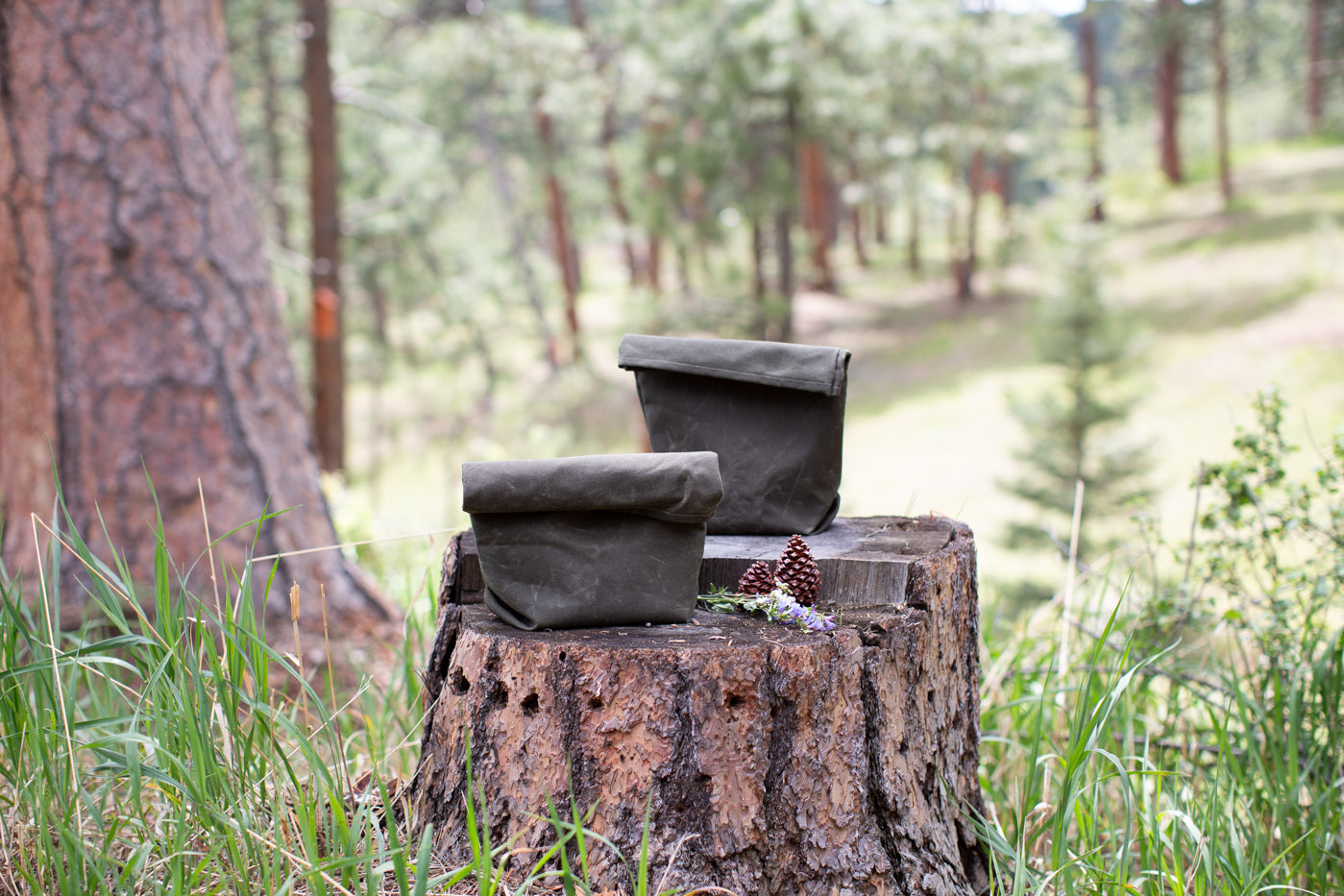 Two evergreen colored waxed canvas lunch sacks, sitting on a wood stump.  Background is forest, two pinecones, white and purple wildflowers are sitting on the wooden stump with the bag.