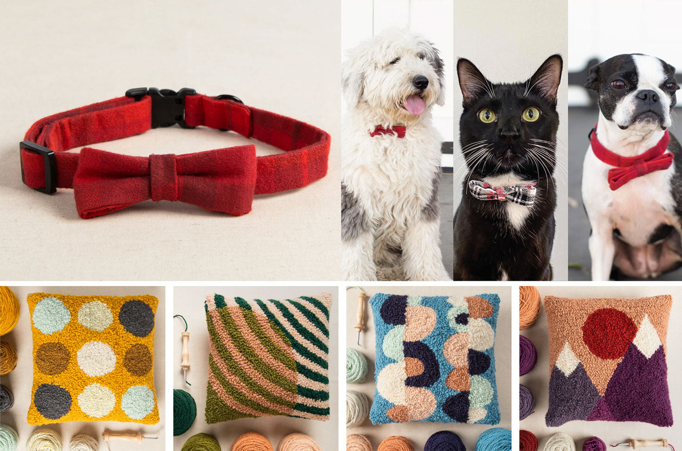 Images of a pet collar and punch needle kits