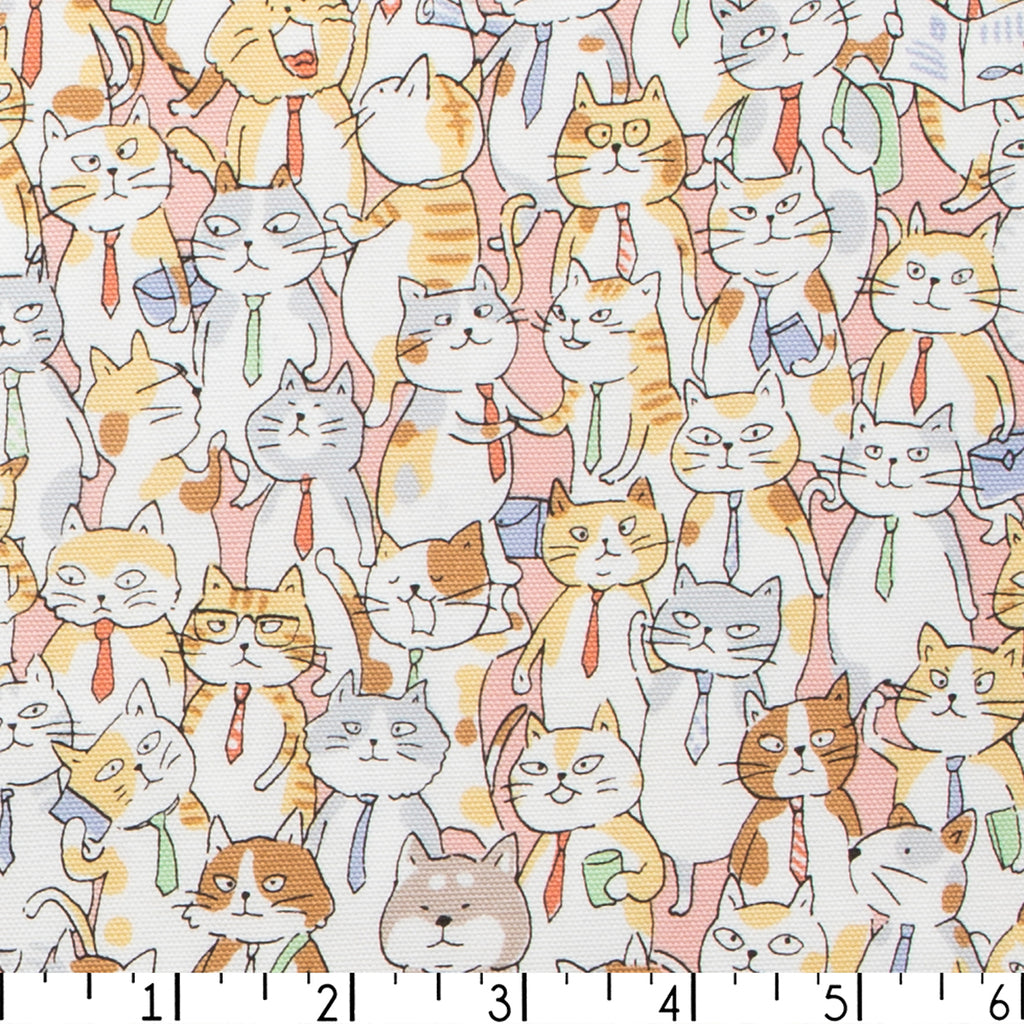 Business Cats Cotton Oxford