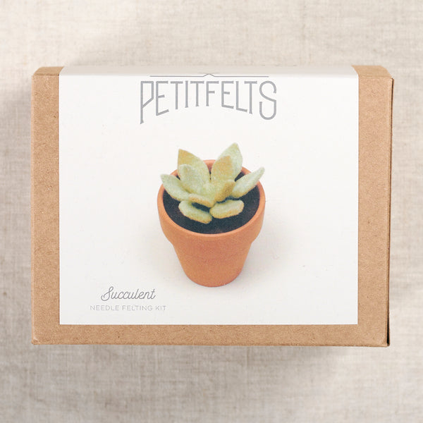 Succulent Needlefelting Kit