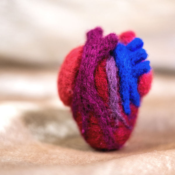 02/20 VIRTUAL Needlefelting 201: Anatomical Heart