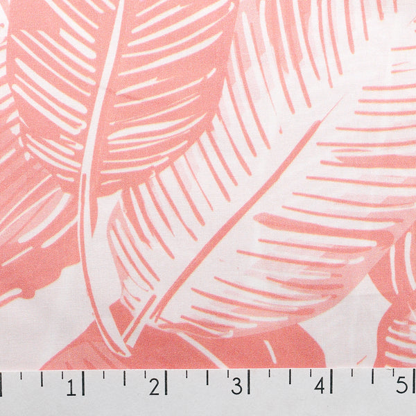 Feather Palm Blush