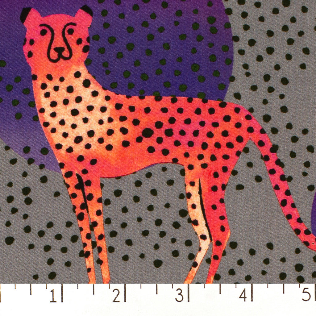 Moon Cheetah
