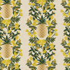 Pineapple Stripe Canvas