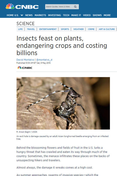 News Story: Insects feast on plants, endangering crops and costing billions