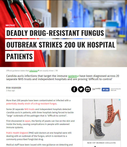 News Story: Deadly Drug-Resistant Fungus Outbreak Strikes 200 UK Hospital Patients