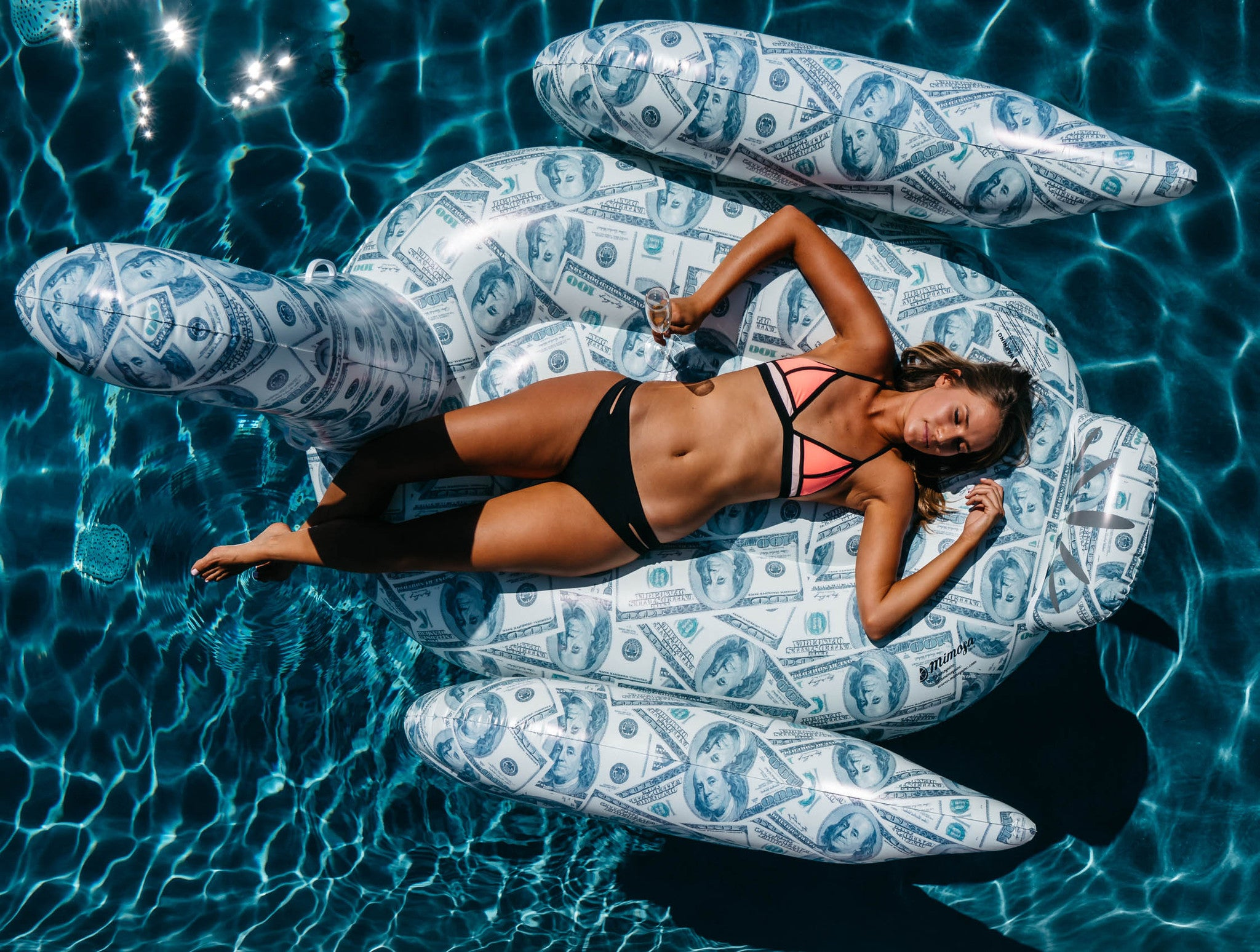 Billionaire Swan Hundred Dollar Bill Pattern Inflatable Pool Toy ...
