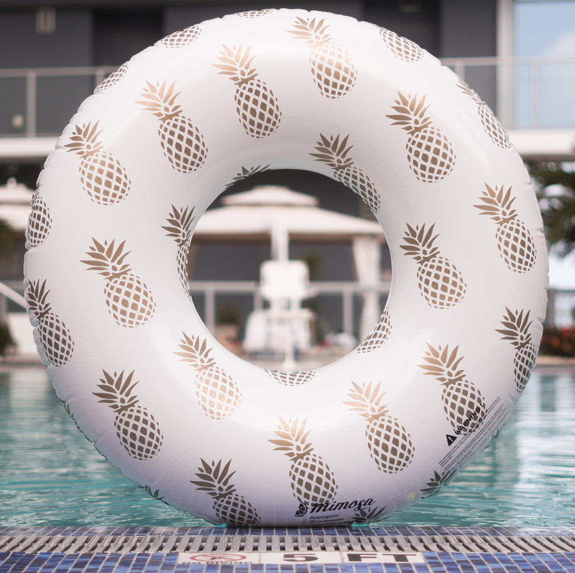 Golden pineapple pattern luxury pool float