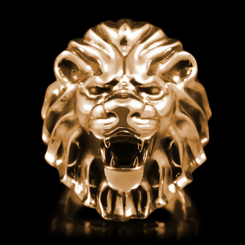 Lion Head Ring - Brass - Twisted Love NYC