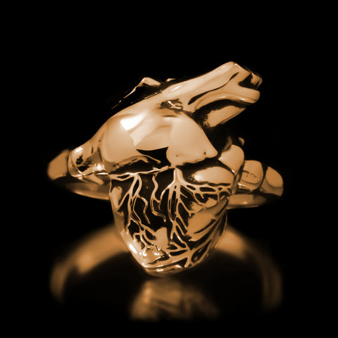 Anatomical Heart Ring - Brass