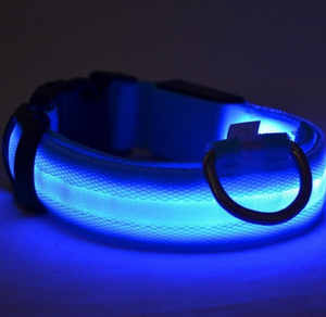 LED Safety Glow Dog Collar