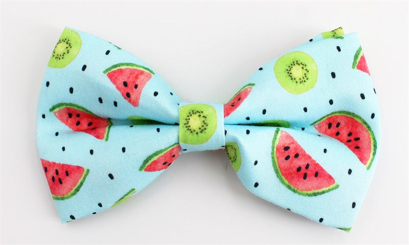 Dog Collar with Dickie Bowtie in a Watermelon & Kiwi Print