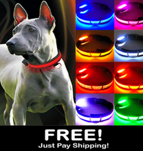 Load image into Gallery viewer, LED Safety Glow Dog Collar