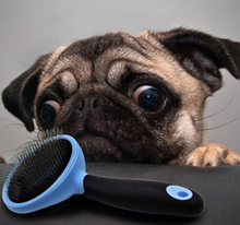 Load image into Gallery viewer, Cat and Dog Professional Self Quick Cleaning Pet Brush