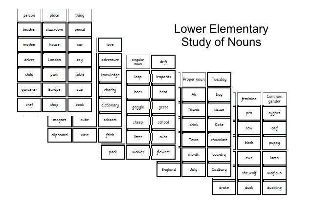 Lower Elementary Study of Nouns Complete set
