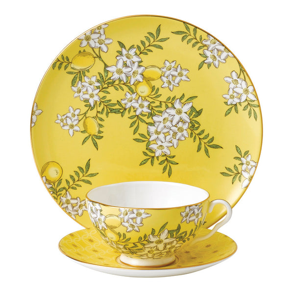 Wedgwood Tea Garden Collection -Lemon & Ginger Giftware Set