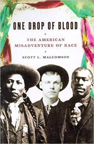 One Drop of Blood; the American Misadventure of Race (E-Book)