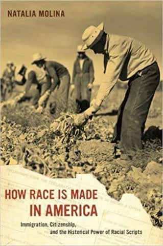 How Race is Made in America; Immigration, Citizenship, and the Historical Power of Racial Scripts (E-Book)