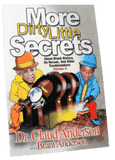Download More Dirty Little Secrets, Volume II by Dr. Claude Anderson (Physical Book), Urban Books, Black History and more at United Black Books! www.UnitedBlackBooks.org
