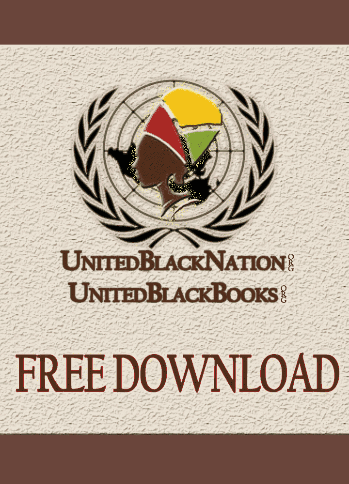 Revolutionary Culture and the Future of Pan Africanism (E-Book) - United Black Books Black African American E-Books